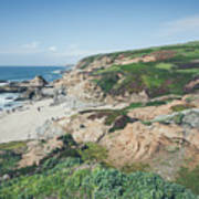 Coastal Views At Bodega Bay Art Print