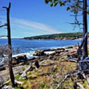 Coastline At Otter Point 1 Art Print