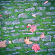 Cobblestone Path Art Print
