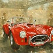 Cobra At Brooklands Art Print