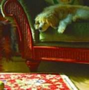 Cocker Spaniel Dog ... Montana Art Photo Art Print