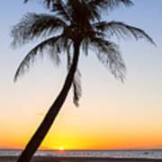 Coco Mo Tropical Sunrise Art Print