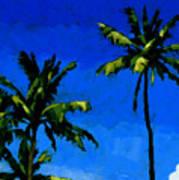 Coconut Palms 5 Art Print