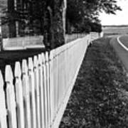 Codori Fence Art Print