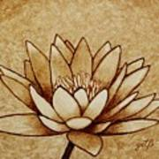 Coffee Painting Water Lilly Blooming Art Print