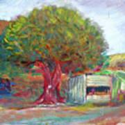 Coffee Tree Aauj Art Print