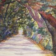 Coffin Point Road Art Print by Stella Schaefer