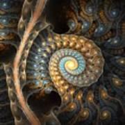 Coiled Spirals Art Print
