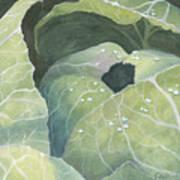 Cold Crop Art Print