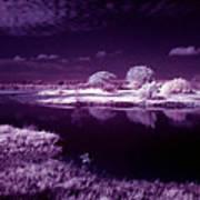 Cold Landscape Art Print
