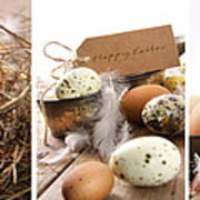 Collage Of Assorted Egg Images  Art Print by Sandra Cunningham