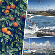 Collage Of Cyprus Images Art Print