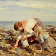 Collecting Shells  Art Print