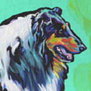 Collie Collie Art Print
