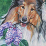 Collie With Lilacs Art Print by Lee Ann Shepard