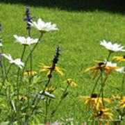 Color Combination Flowers Cc64 Art Print