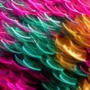 Color Curls Art Print