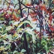 Color Gone Wild Art Print