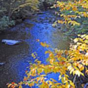 Color On Big Cataloochee Creek Art Print