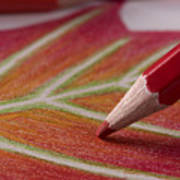 Color Pencil Drawing Art Print