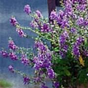 Color Purple Art Print