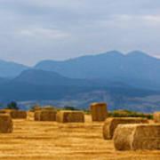 Colorado Agriculture Farming Panorama View Pt 2 Art Print