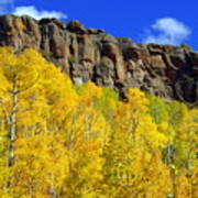 Colorado Fall 3 Art Print