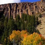 Colorado Fall 4 Art Print