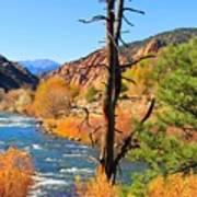 Colorado Fall Art Print
