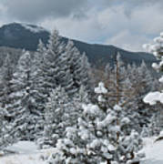 Colorado Foothills Winter Panorama Art Print
