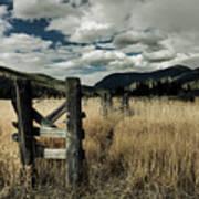 Colorado Mountain Meadow Art Print