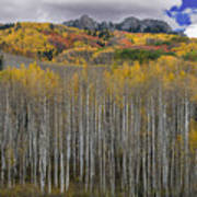 Colorado Splendor Art Print