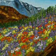 Colorado Wildflowers Art Print
