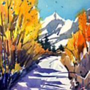 Colorado Winter 1 Art Print