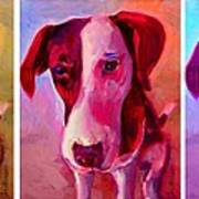 Colored Dog Strip Art Print