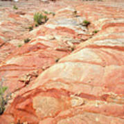 Colored Hill In Valley Of Fire Art Print