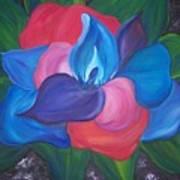 Colorful Am I Art Print