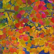 Colorful Aspen Art Print