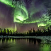 Colorful Auroras Art Print