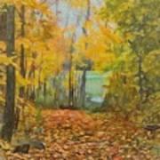 Colorful Autumn Trail Art Print