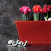 Colorful Cactus In Terracotta Pot Art Print