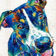 Colorful Dog Art - Happy Go Lucky - By Sharon Cummings Art Print