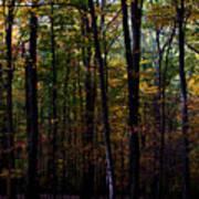 Colorful Fall Season Art Print