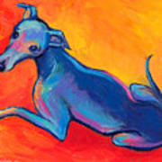 Colorful Greyhound Whippet Dog Painting Art Print
