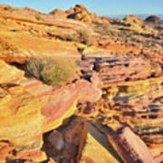Colorful Morning At Valley Of Fire Art Print