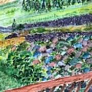 Colorful Rock Garden Art Print
