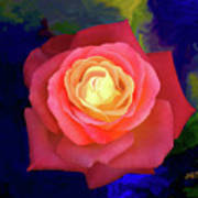 Colorful Rose 2 Art Print