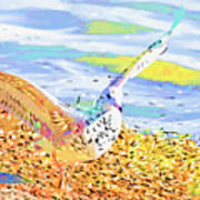Colorful Seagull Art Print