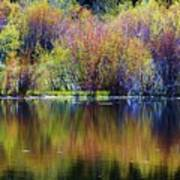 Colors Of Autumn In May Art Print