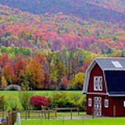 Colors Of New England Art Print